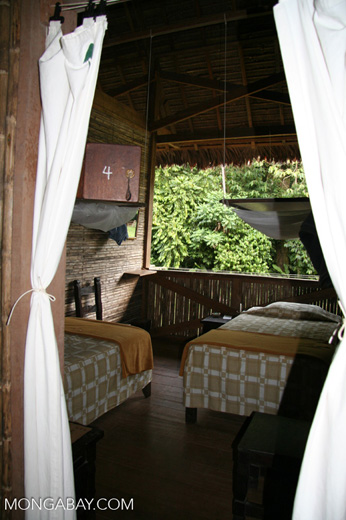 Room at the Tambopata Research Center lodge
