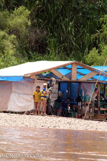 Gold miners along the Rio Tambopata [tambopata-Tambopata_1027_3615]