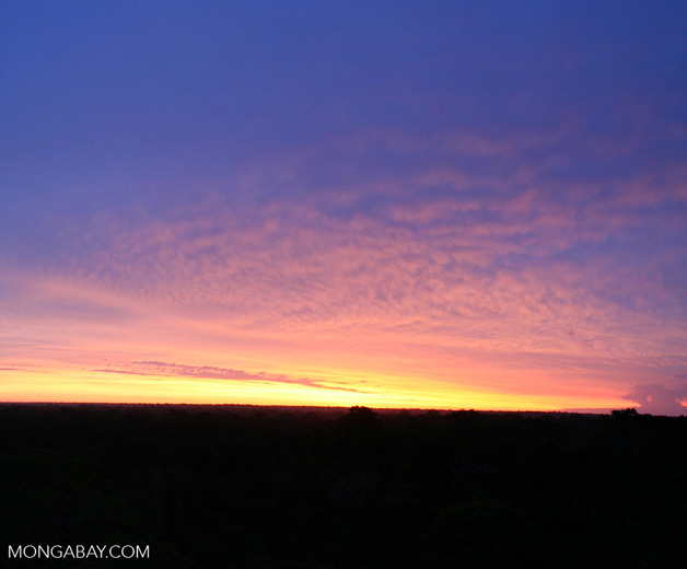 Sunrise over the Amazon rainforest [tambopata-Tambopata_1030_4988]