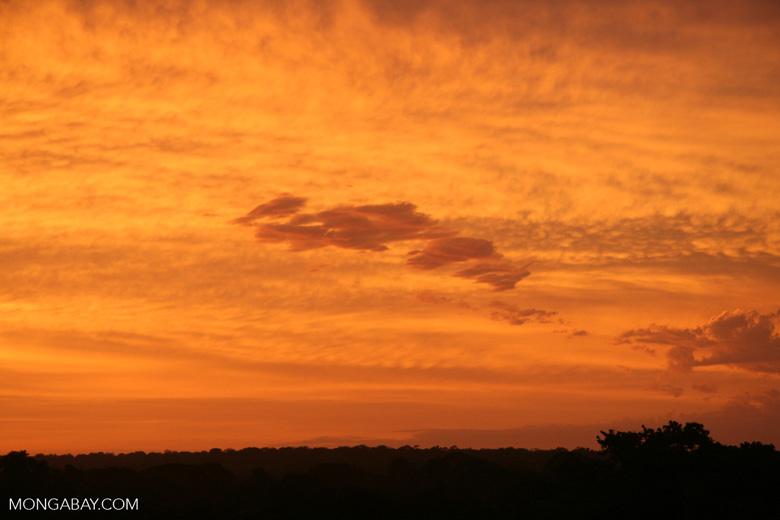 Sunrise over the Amazon rainforest [tambopata-Tambopata_1030_5017]