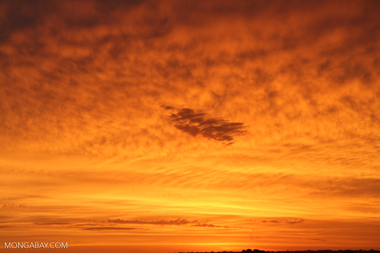 Sunrise over the Amazon rainforest [tambopata-Tambopata_1030_5018]