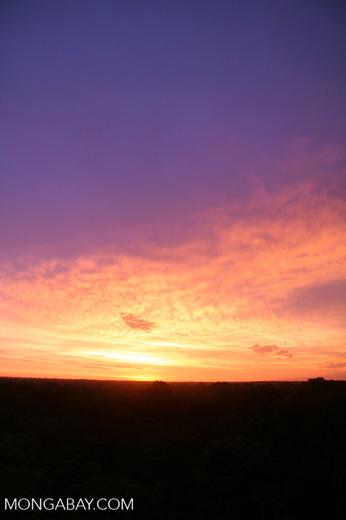 Sunrise over the Amazon rainforest [tambopata-Tambopata_1030_5024a]