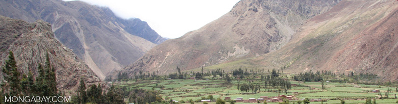 Andean valley agriculture