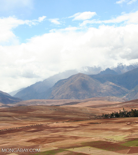 Snow-capped mountains in the Andes with agricultural fields in the foreground