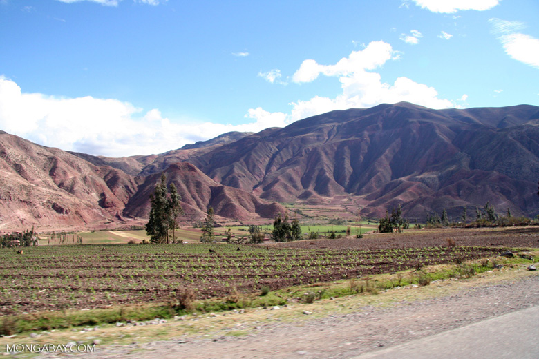 Urubamba Valley [cuzco-Urubamba_1018_0613]