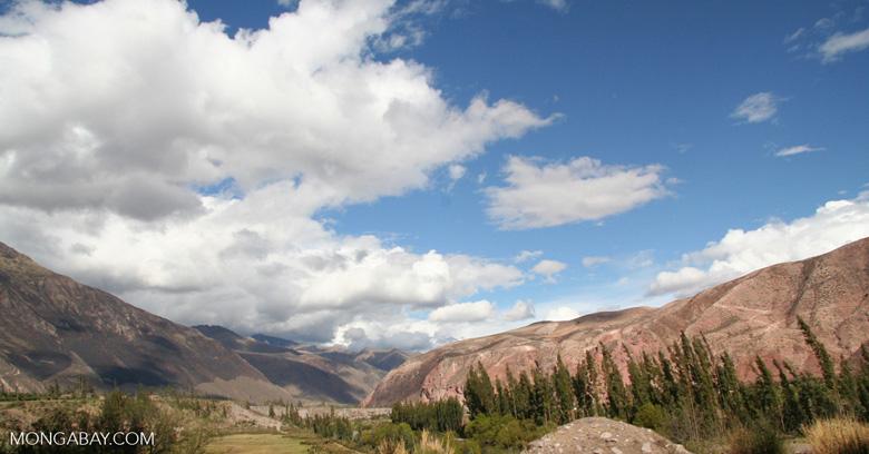 Urubamba Valley [cuzco-Urubamba_1018_0620]
