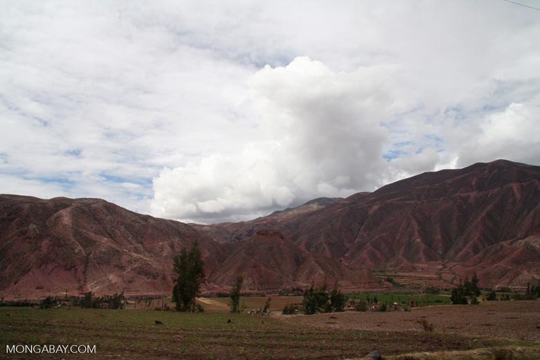 Urubamba Valley [cuzco-Urubamba_1018_0734]