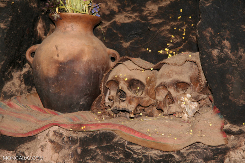 Human skulls in the Andes