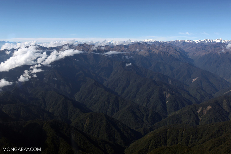 Upper Amazon cloud forest and the Andes