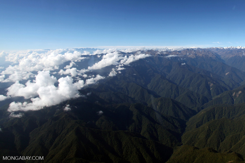 Upper Amazon cloud forest and the Andes [peru_aerial_0110]