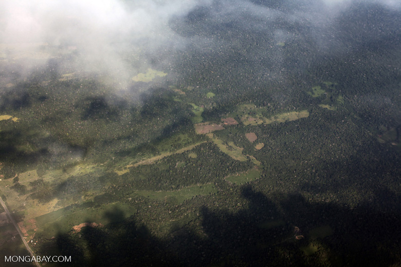 Agricultural clearing in the Amazon rainforest along the Transoceanic highway