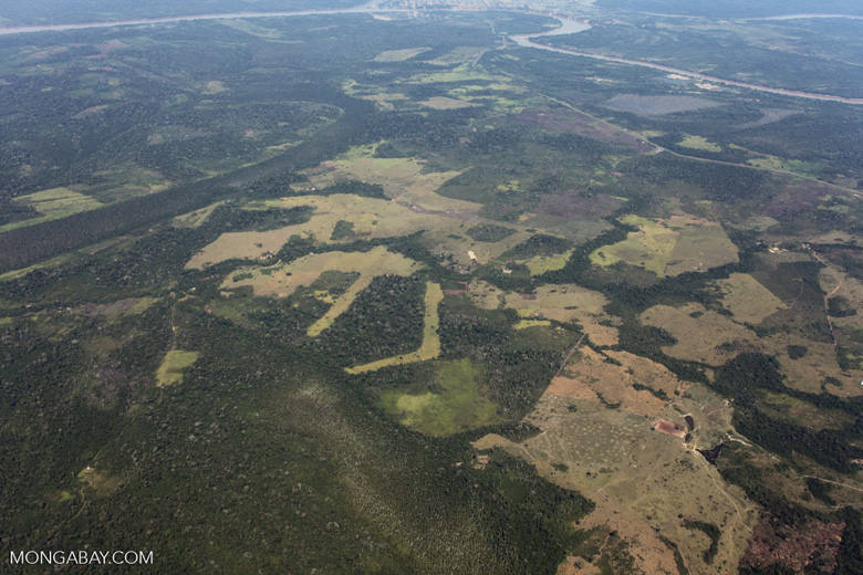 Amazon landscape scarred by clearing for cattle pasture