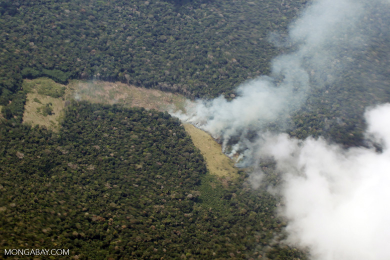 Fire in the Amazon rainforest as seen from an airplane