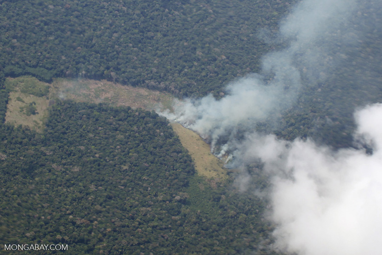 Forest fire in the Amazon as seen from an airplane
