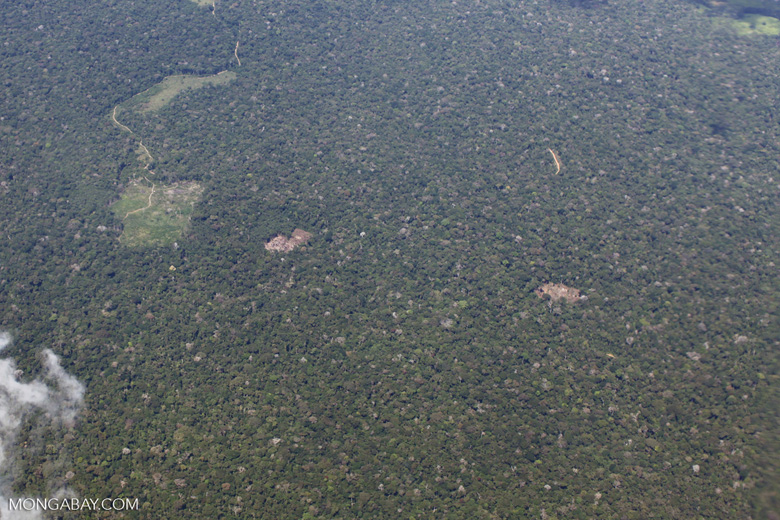 Deforestation for cattle ranching [peru_aerial_1392]
