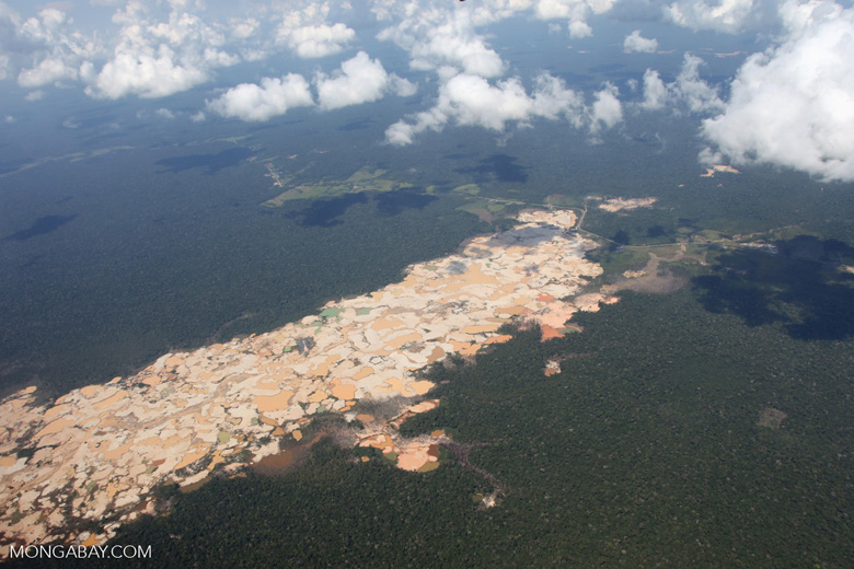 Massive gold mining area in the Peruvian Amazon [peru_aerial_1534]