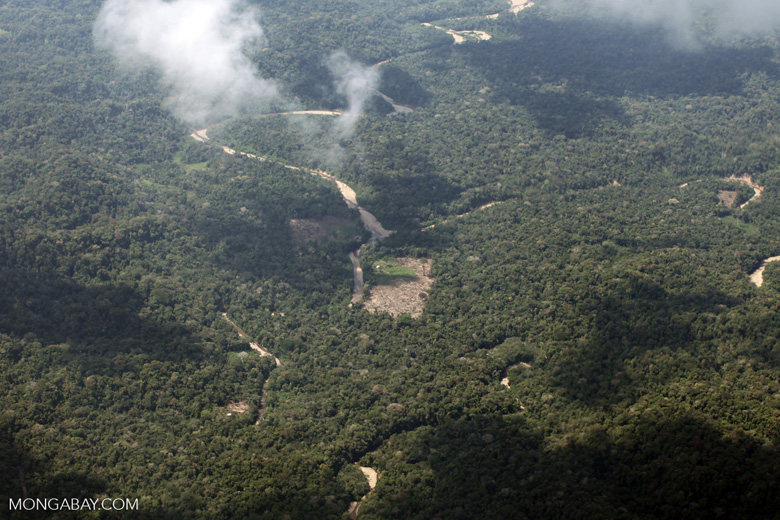 Deforestation in the Amazon [peru_aerial_1607]