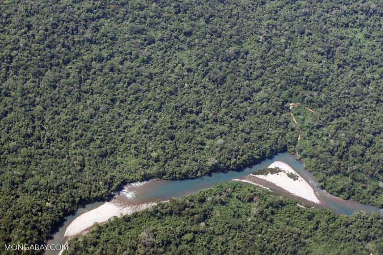 An Amazon basin river with intact forest canopy on both sides.