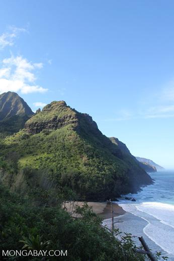 Na Pali Coast as seen from the Kalalau Trail