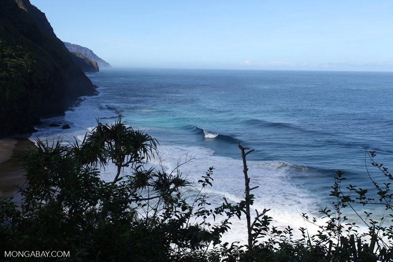 Surf off the Na Pali Coast