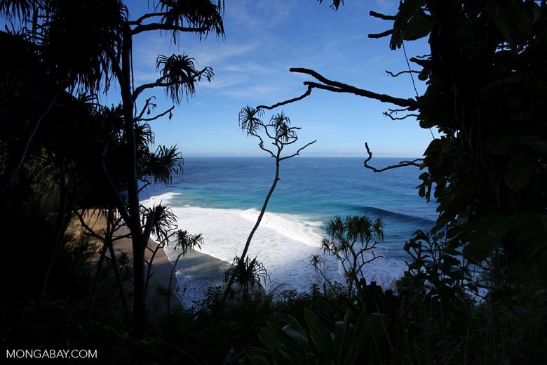 Hanakapi'ai Beach on the Kalalau Trail