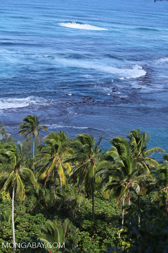 Surf off the Na Pali Coast
