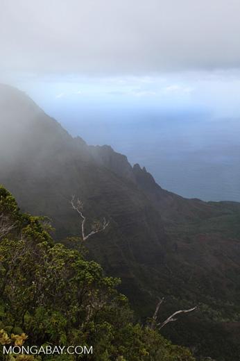 Na Pali Coast valley
