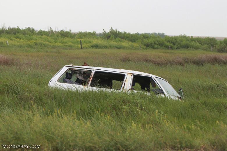 Van wrecked by hurricane Katrina