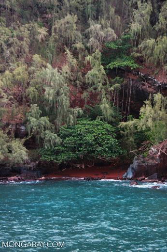 Red sand beach, turquoise water in Hana