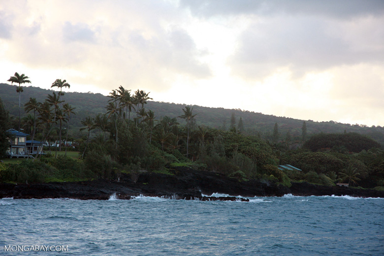 Hawaiian coast in Hana