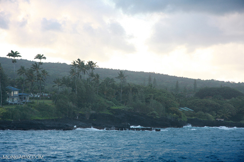 Hawaiian coast in Hana