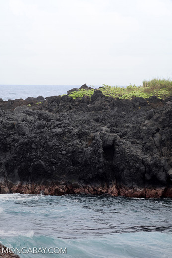 Waves crashing on lava at Wainapanapa State Park