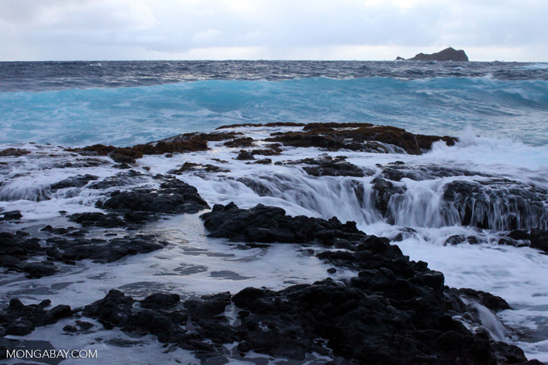 Tidepools on the Hana coast