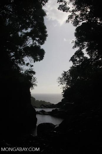 Top of Makahiku Falls