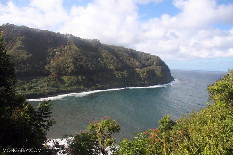 Bay along the Hana highway