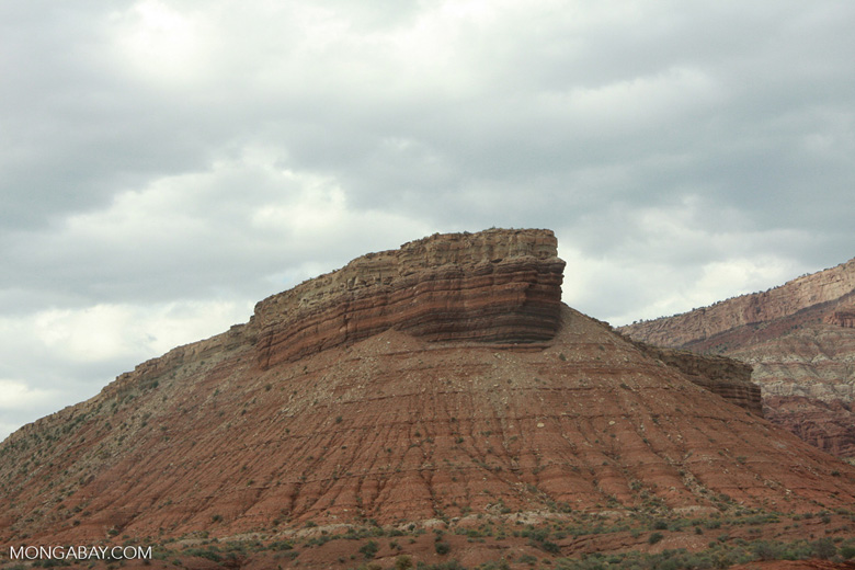 Plateau near Zion National Park