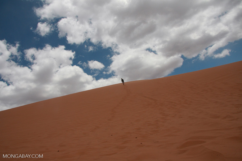 Woman hiking to the top of a sand dune