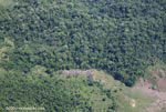 Aerial view of a forest edge in Costa Rica