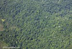 Aerial view of forest near Corcovado [costa-rica-d_0617]