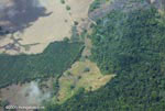 Aerial view of oil palm plantations and rainforest in Costa Rica [costa-rica-d_0720]
