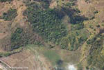 Aerial view of new oil palm plantations encroaching on forest land in Costa Rica