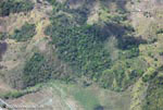 Aerial view of new oil palm plantations encroaching on forest land in Costa Rica [costa-rica-d_0772]