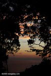 Sunset in the Costa Rican rainforest of the Osa Peninsula