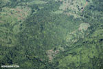 Airplane view of rain forest in Costa Rica [costa_rica_aerial_0048]