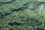 Overhead view of rainforest in Costa Rica [costa_rica_aerial_0055]