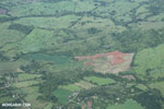 Aerial view of oil palm plantations in Costa Rica [costa_rica_aerial_0057]