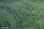 Aerial view of rain forest in Costa Rica