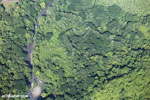 Aerial view of rain forest in Costa Rica [costa_rica_aerial_0082]
