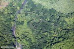 Overhead view of rainforest in Costa Rica [costa_rica_aerial_0083]