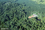 Aerial view of rainforest and oil palm plantations in Costa Rica [costa_rica_aerial_0099]